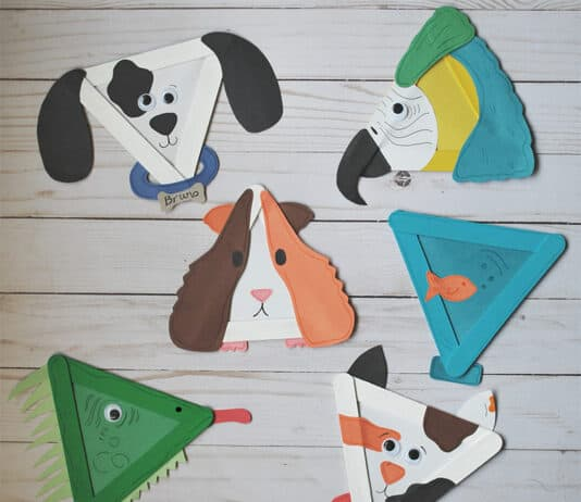 PET CRAFTS FOR KIDS