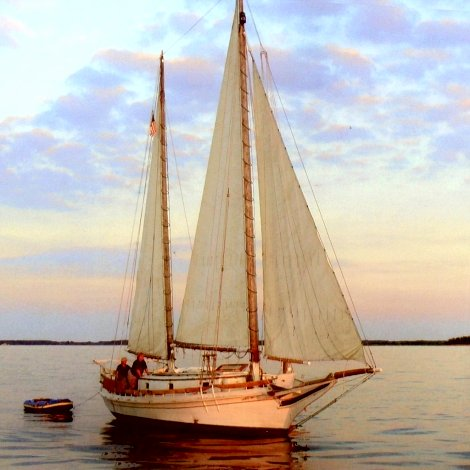 Chesapeake three sail bateau Jolly Dolphin