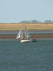 Swale match 2013 30 another small cutter