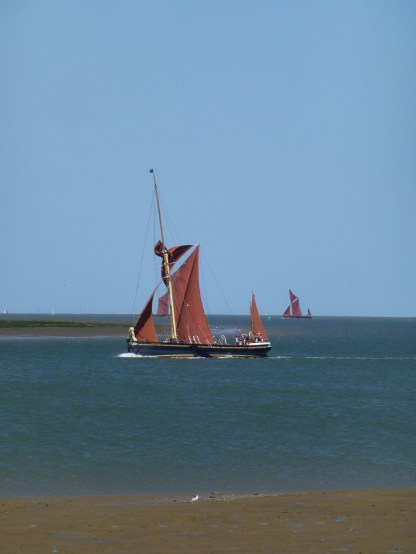 Swale match 2013 6 sailing barge Edith May