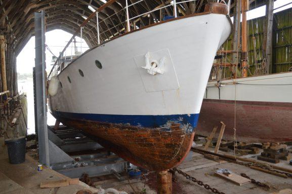 Stirling and Son - Life Aquatic Restoration (1)