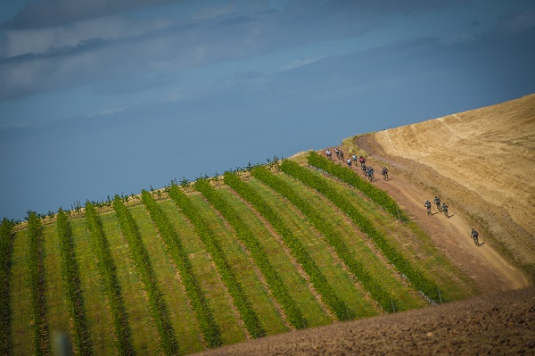 Riders in action during stage three of the W2W MTB Adventure. Photo: Tobias Ginsberg