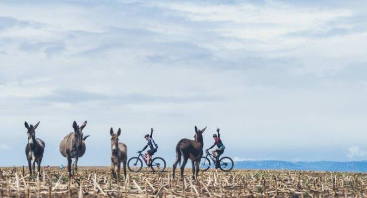 During the first stage of the Berg and Bush 'Great Trek', mountain bikers were greeted by some donkeys.