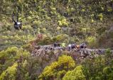 Covering the action at Cape Pioneer Trek