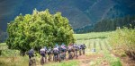 Wines2Whales Adventure riders in action on day one of last year's event at Oak Valley Wine Estate.