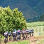 Results: Wines2Whales Adventure day one