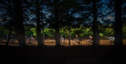 Riders make their way through a forest section during stage one of the Wines2Whales Adventure. Photo: Tobias Ginsberg