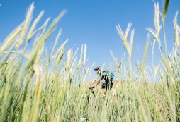 A rider moving through reeds during stage one of the Berg and Bush 'Great Trek'. Photo: Em Gatland