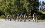 Riders stringing out during the road race at the Festival of Cycling. Photo: East Cape Cycling