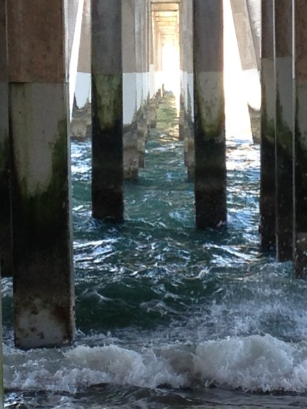 The pilings under Jennette's Pier, Nags Head,NC