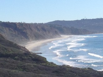 View of Glider Point from Torrey Pines State Natural Reserve