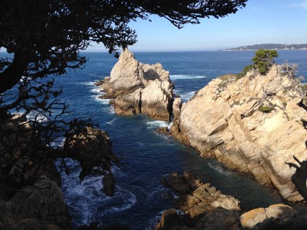 Point Lobos Reserve, CA
