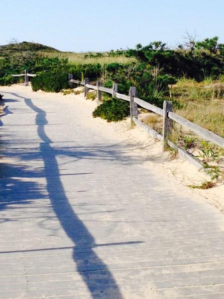 National Sea Shore, Cape Cod