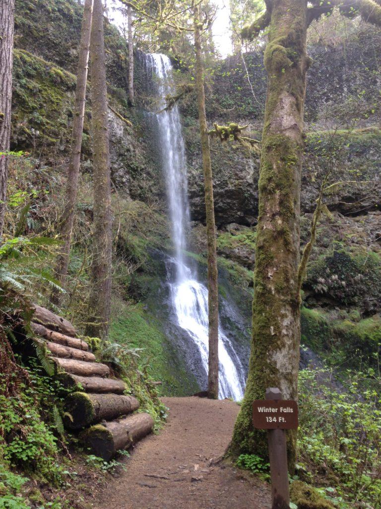 Winter Falls Silver Falls State Park