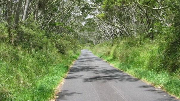 Route 3, Aloha Loop