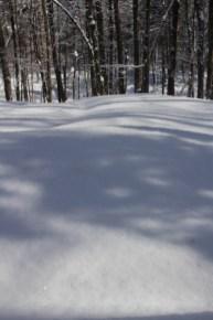 Côte de Salzbourg – Noch mehr Schneee
