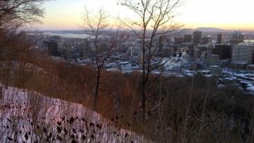 Aussicht vom Mont Royal