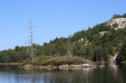 Insel auf dem Grace Lake