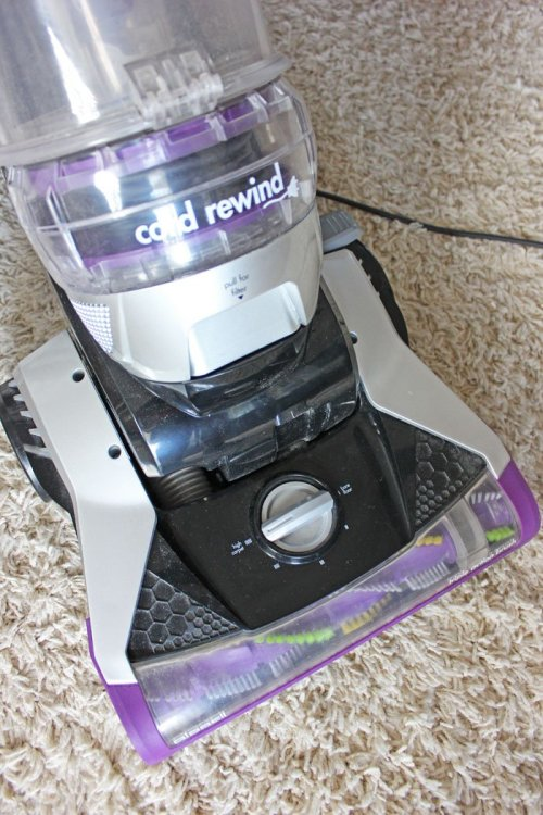 Invest in a good vacuum that suits all your familys needs