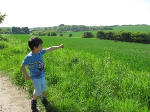 boy in the countryside