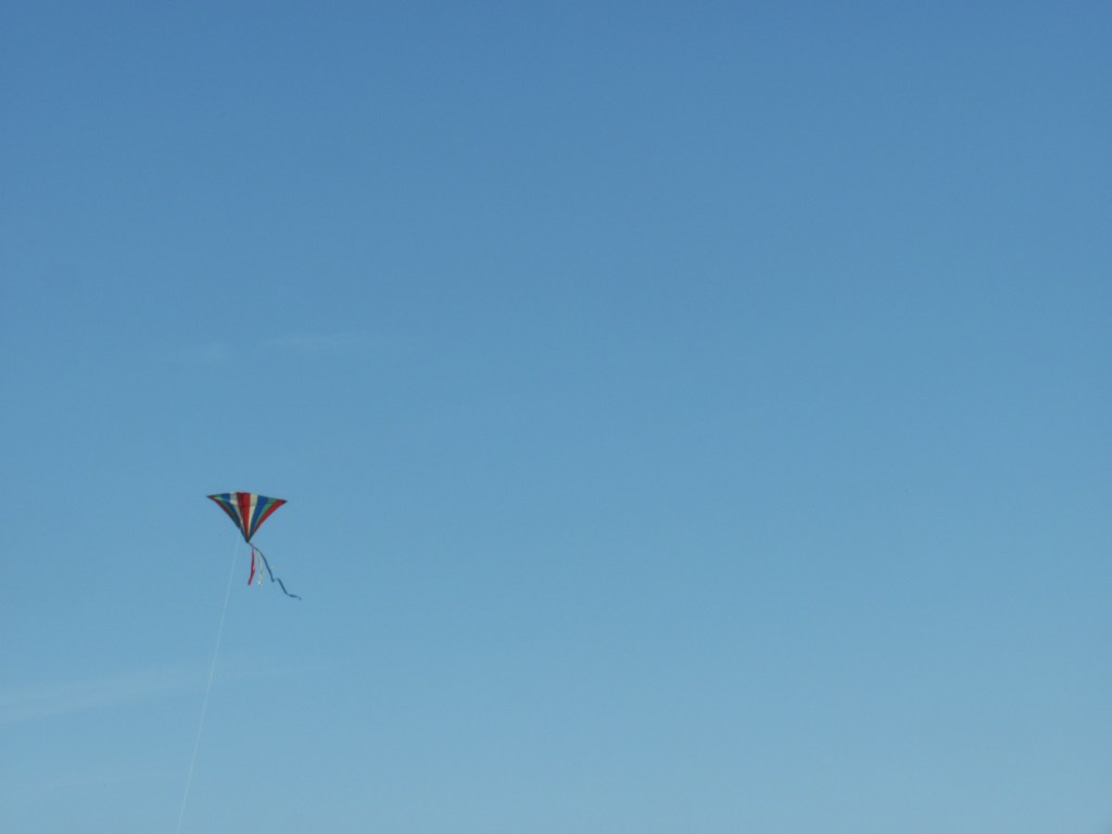 Kite flying in the sky, on a sunny summers day with blue skies