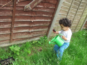 baby and watering can in the garden toddler