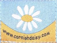 Cornish Daisy