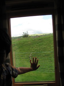 looking out the window into the countryside