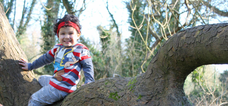 up a tree at denham country park