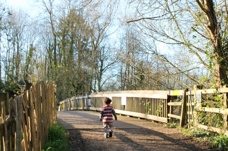 Take a nature walk with kids for a free day out and chance to learn through nature