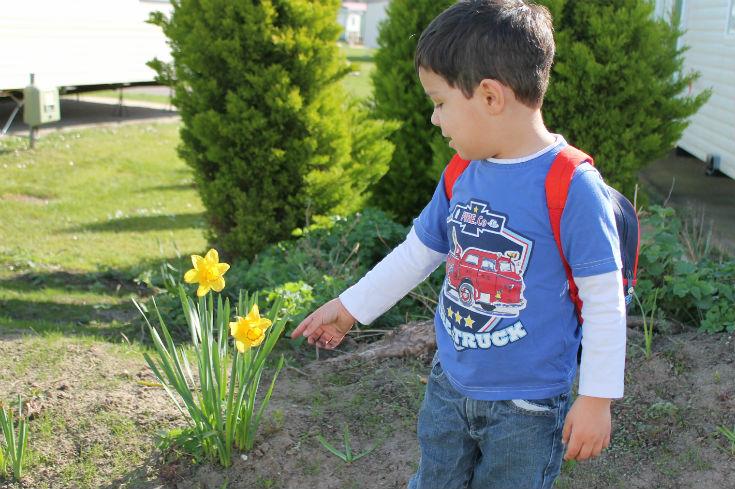 gardenparkdean