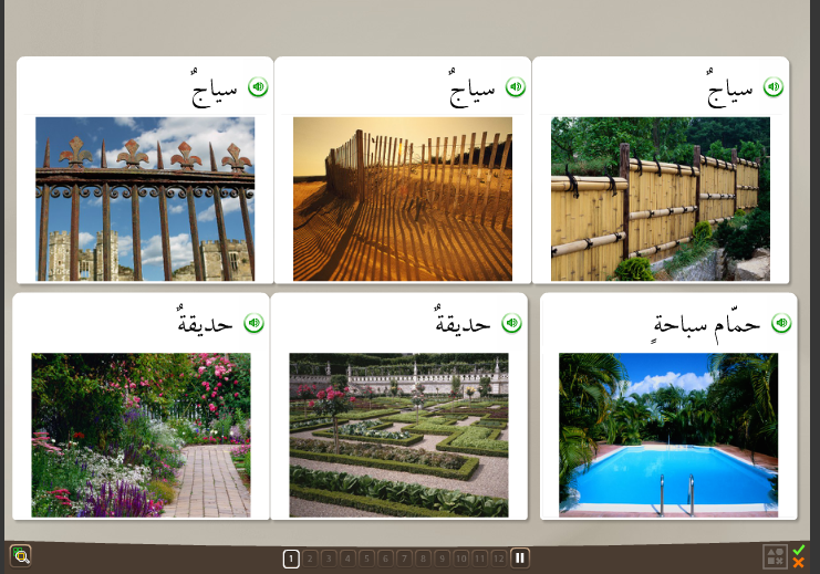 arabic vocabulary with rosetta stone