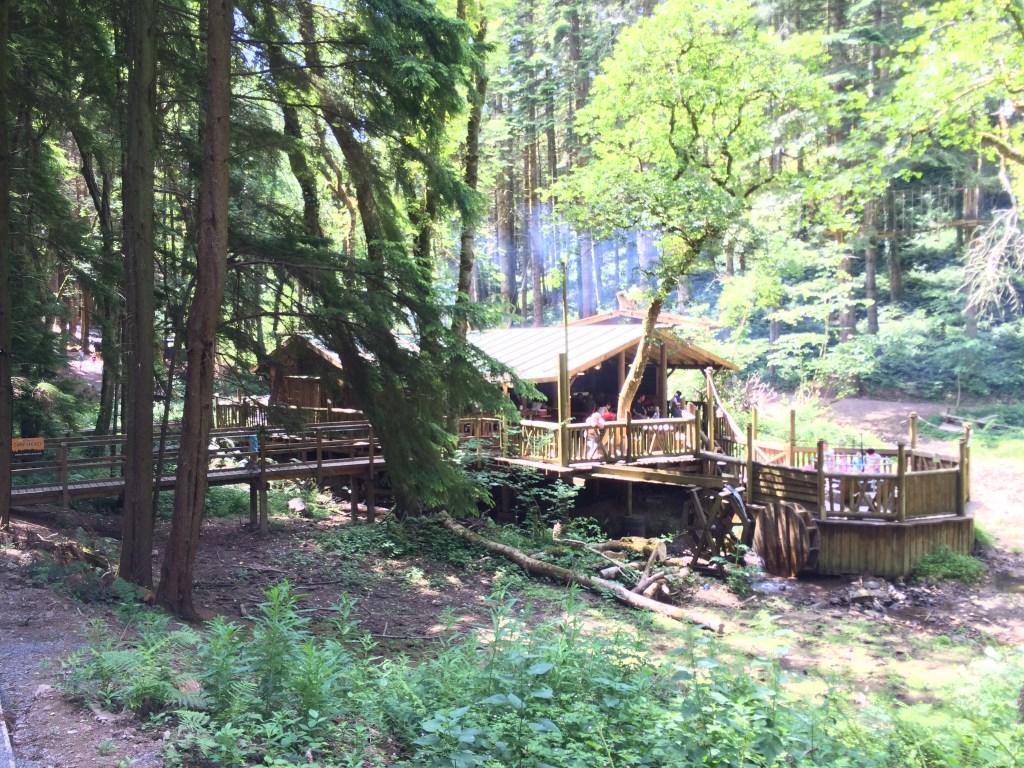 camp smokey bluestone