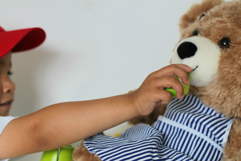 teddy bear's picnic for early learning skills