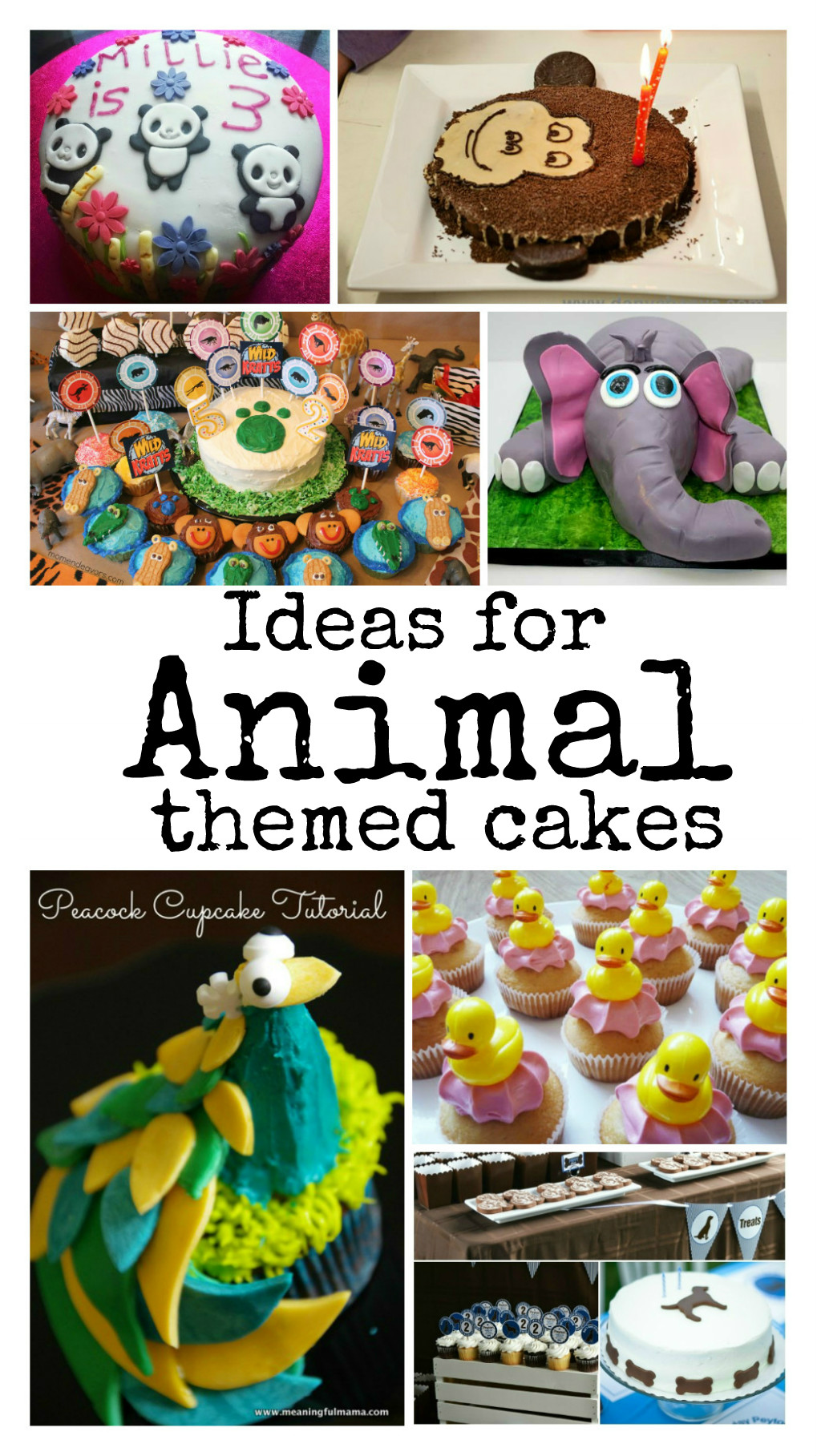 Jungle Themed Cakes How To Decorate