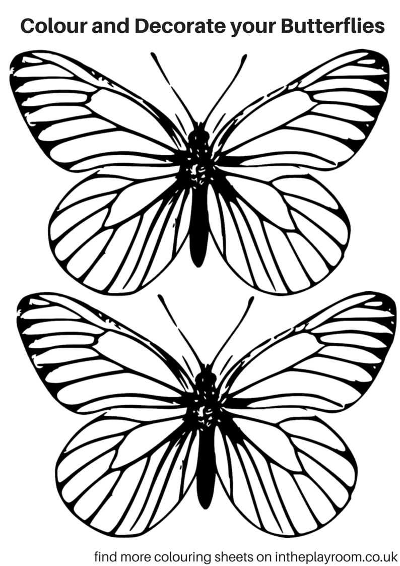 Free printable butterfly colouring pages in the playroom for Butterfly template free