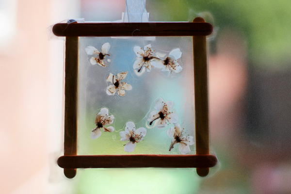 dried pressed blossom spring craft for kids