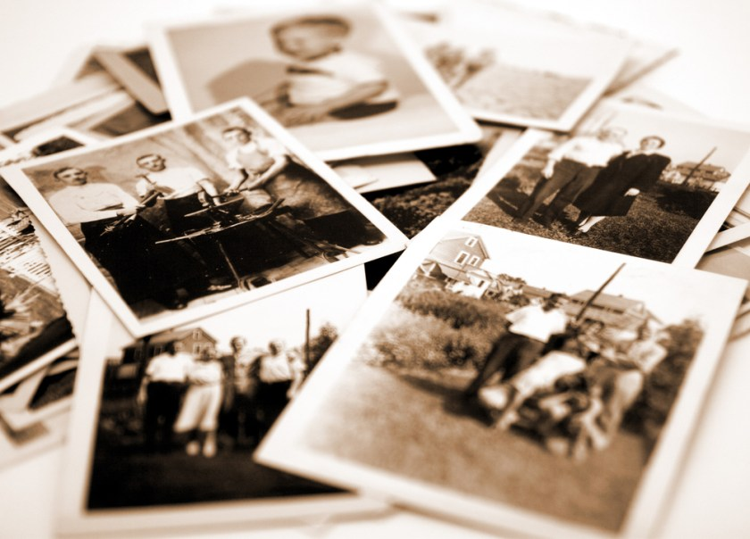 Use old photographs to make a family tree with kids