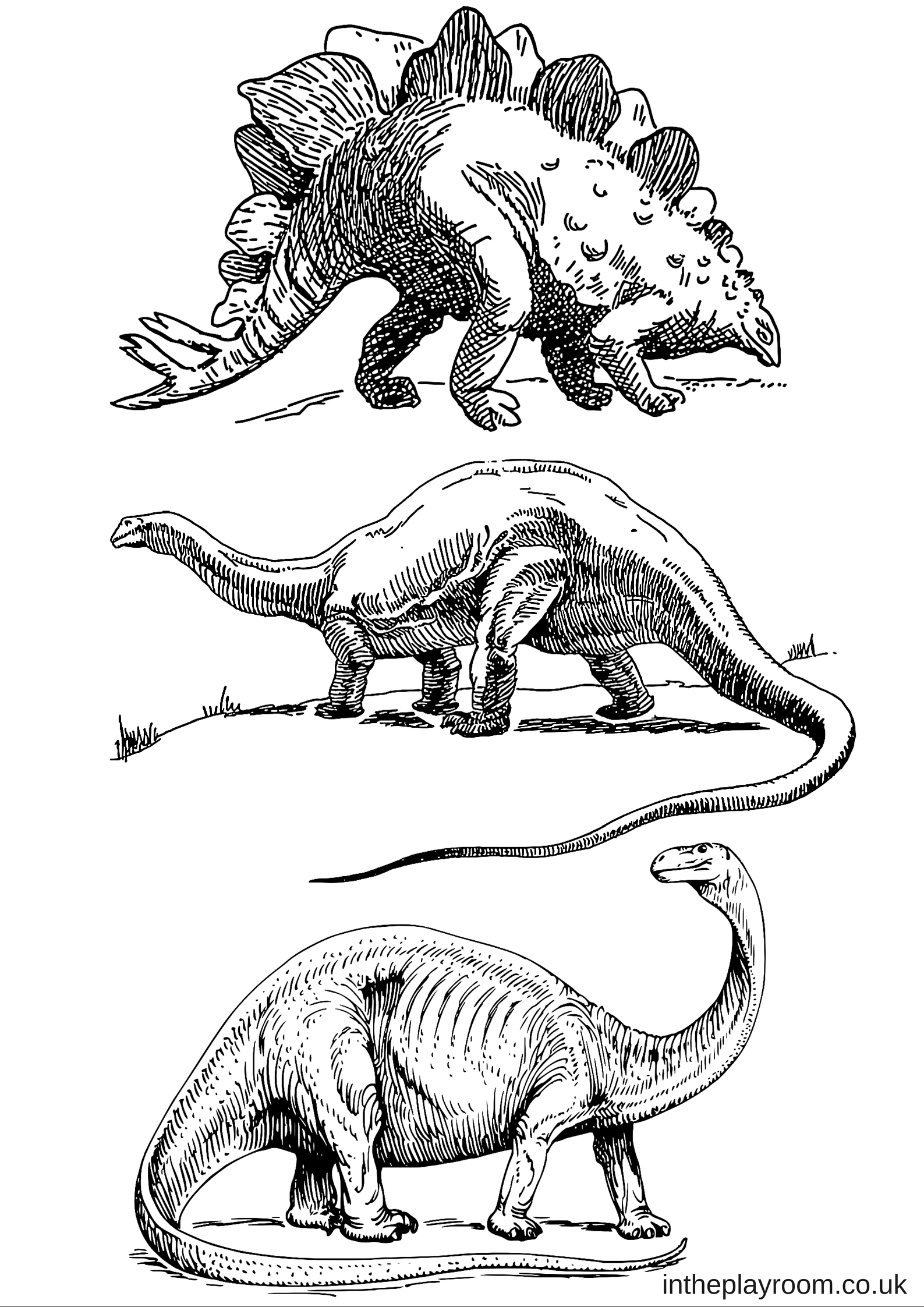 Dinosaur colouring pages in the playroom for Printable coloring pages dinosaurs