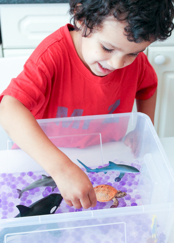 schleich ocean animals sensory play