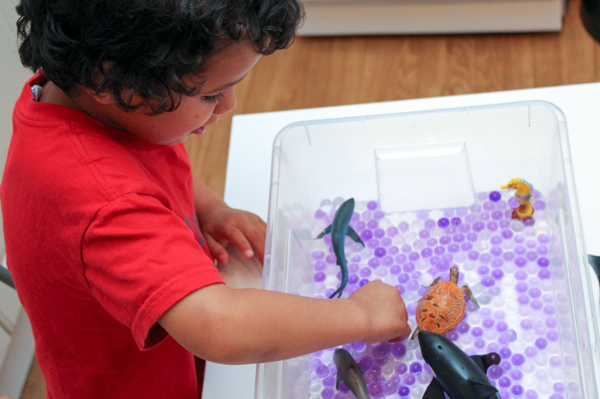 schleich ocean animals sensory bin with water beads