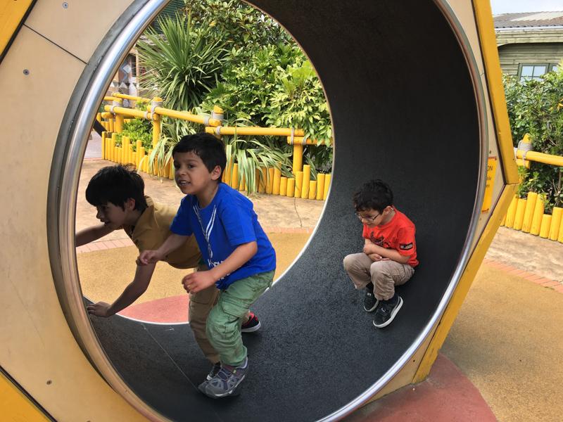 go wild drusillas playground