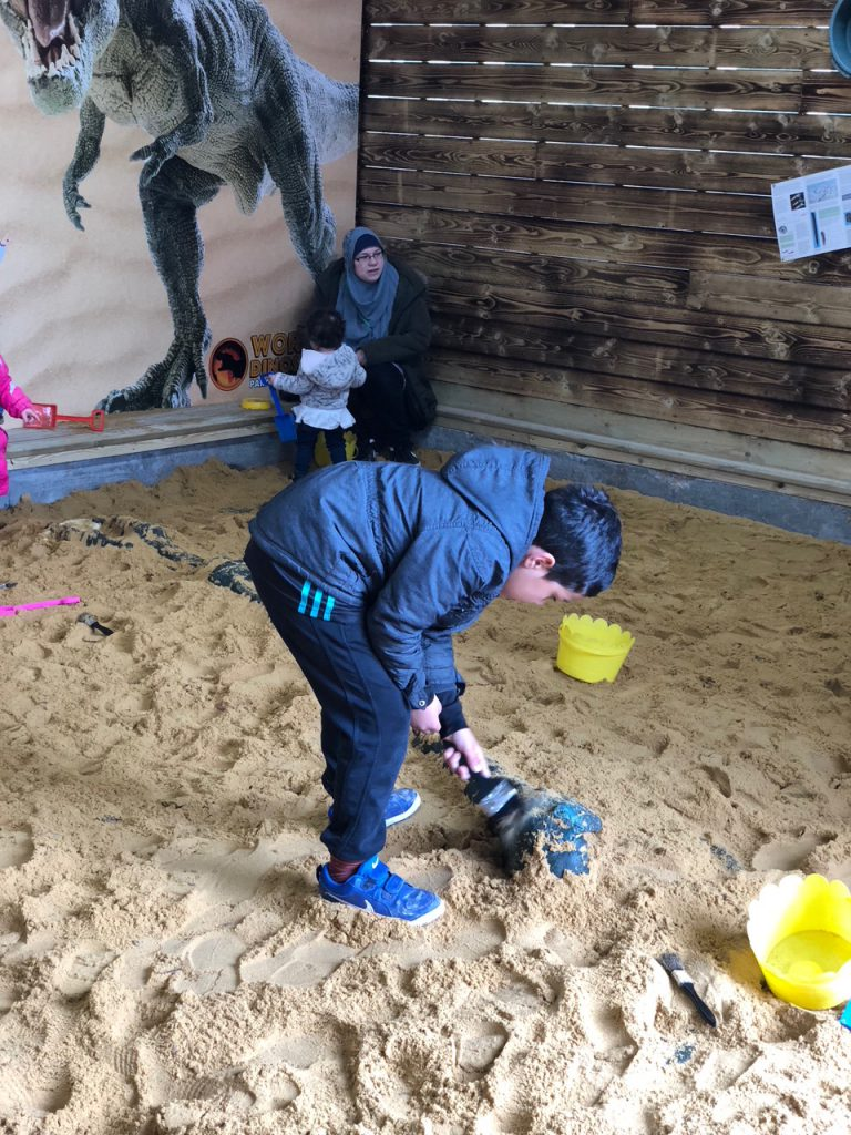 dino dig sandpit World of Dinosaurs at Paradise Wildlife Park