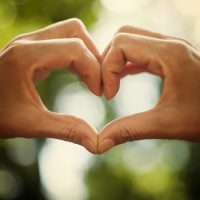 heart of human hands as symbol of love on the green background