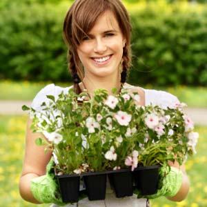 ten-rules-for-growing-a-time-saving-garden0