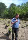 Domaine-Jean-Louis-Tribouley