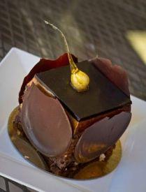 Finesse Pastries   Chocolate hazelnut genoise