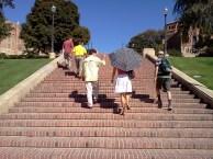 Janss Steps