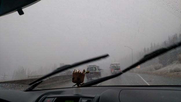 Little Groot in Colorado snowstorm