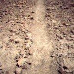 Борозды (полосы) в пустыне Наска вблизи